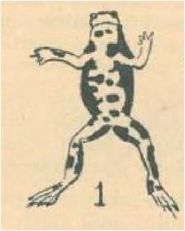 Figure 7: Illustration d'un Sonneur à ventre jaune dans l'article de Molinier (1955) - Dix années d'excursions mensuelles avec la Société Linnéennes de Provence.