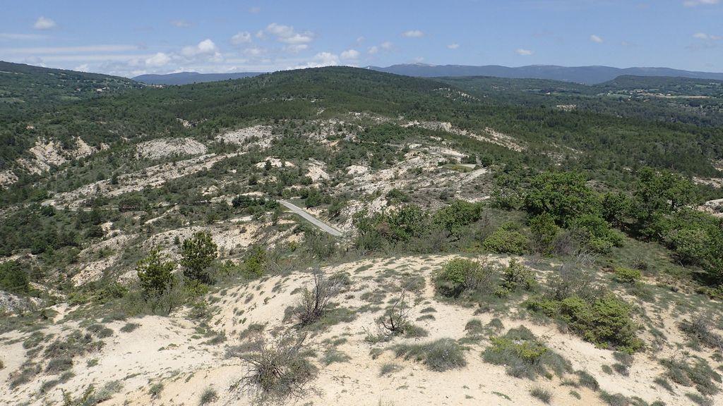 Habitat préférentiel du Psammodrome d'Edwards composé d'un sol calcaire et marneux d'âge Eocène-Oligocène, Forcalquier, 2018.
